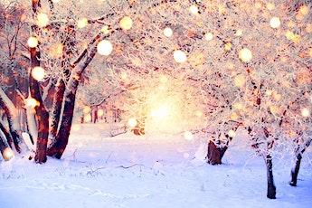 woensdag 23 decemberKerstverhaalSneeuwmamma tickets