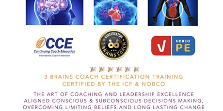 3 Brains Coach Certification ICF CCEU Accredited tickets