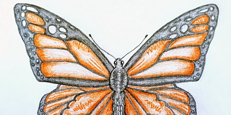 Get Drawing Butterflies: Art for Wellbeing Workshop tickets