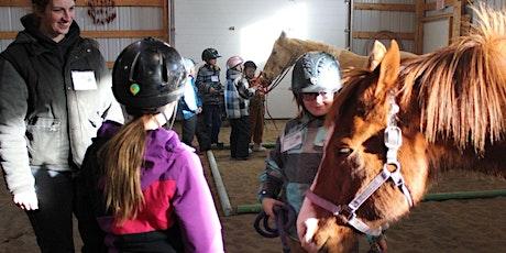 Virtual Horse Classroom tickets