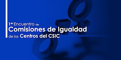 I Encuentro de Comisiones de Igualdad de los Centros del CSIC tickets