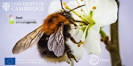 Give Bees a Chance! How can we help bees and feed the world? tickets