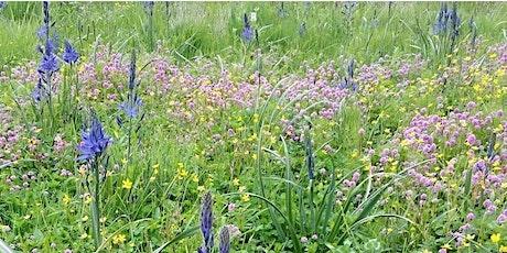 Gardening for Garry Oak Ecosystems tickets
