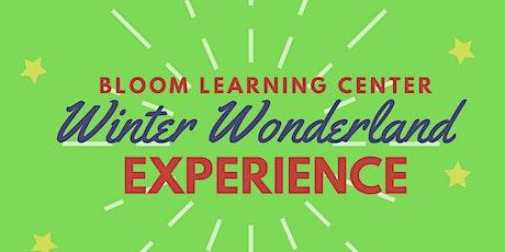 Winter Wonderland Experience tickets