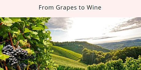 WINE FUNDAMENTAL CLASS: From Grapes to Wine, $69 tickets