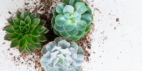 Green Thumb 101 Virtual Workshop with Craft Happy tickets