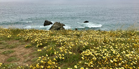 Zoom Speaker Series: Pacifica Habitats and the Stewards Restoring Them tickets