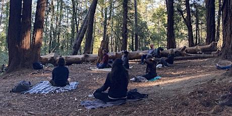 Hike & Meditation in Presidio Forest tickets