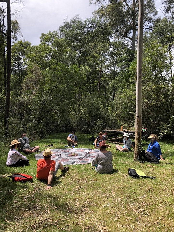 Forest Therapy Yarra Valley -  restoring sensory walk - CC image