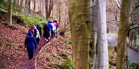 Mindful Walk at Minnowburn tickets
