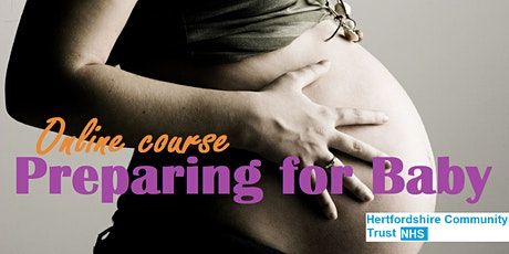 Online Preparing for Baby – online course content available immediately tickets