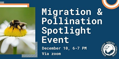 Migration and Pollination: Spotlight on Pollinators & Food Security tickets