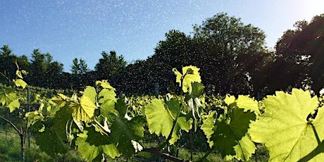 Growing Biodynamically: the principles and practice of biodynamic gardening tickets
