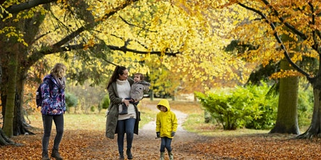 Timed entry to Kedleston Hall garden and parkland (7 Dec - 13 Dec) tickets