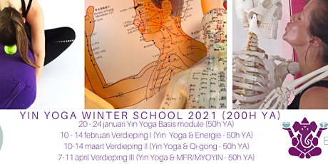 Yin Yoga Opleiding Utrecht - Yin Yoga Winter school yintensive (200h YA) tickets