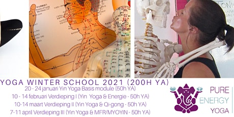 Yin Yoga training Yin Yoga & Qi-gong (50h YA) live online billets