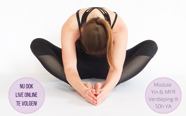 Afbeelding van Yin Yoga & Myofascial release & Myoyin opleiding (50h YA)
