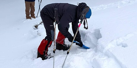 Avalanche Refresher Clinic tickets