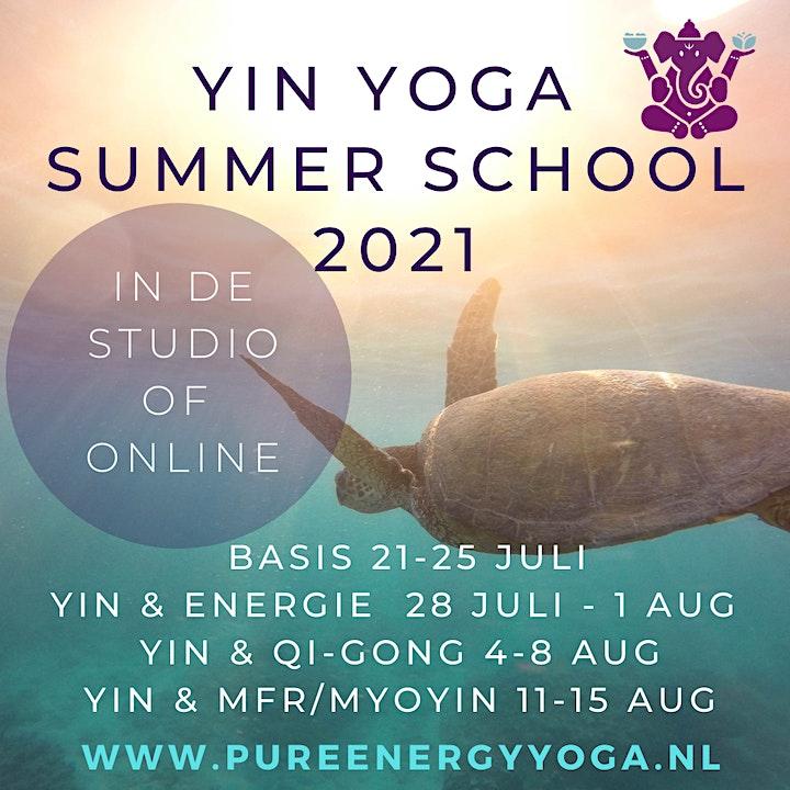 Afbeelding van Yin Yoga opleiding ( Yin Yoga & Energie 50h YA) - Yin Yoga Summer School
