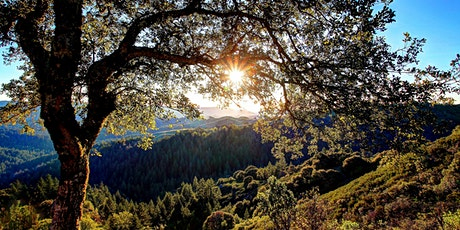 Lunch & Learn at  Skyline Ridge Preserve: Chestnuts, Christmas Trees & More tickets