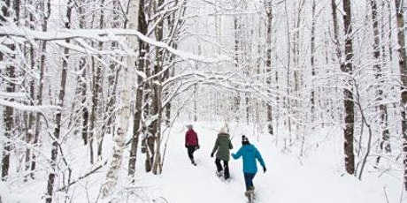 Family Winter Hike: Blue Mound State Park tickets