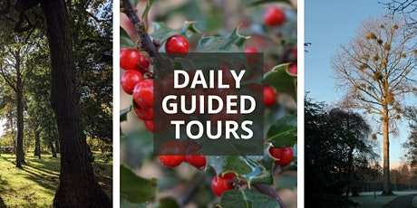 December Daily Guided Tours tickets