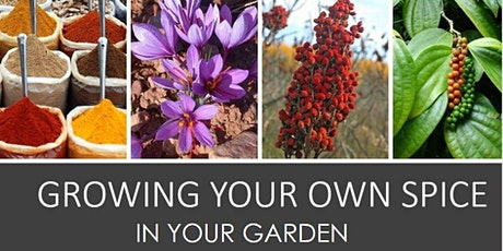 GROWING YOUR OWN SPICE IN YOUR VEGETABLE GARDEN tickets