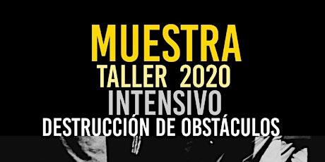 MUESTRA TALLER 2020 entradas