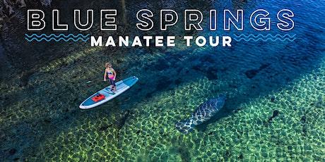 Blue Springs Manatee Tour tickets