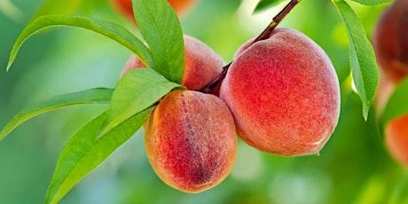 PNW Fruit Trees tickets