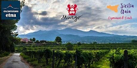 Etna & Wine - Murgo Experience biglietti