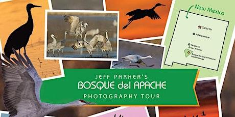 Bosque del Apache Photo Tour tickets