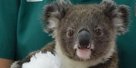 Gecko Talks 16 December: Dr Michael Pyne on Koalas tickets