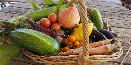 Living Smart Course - Sustainable Food Gardens tickets