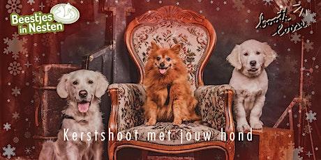 Kerstshoot met je hond tickets