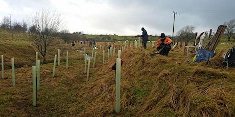 Tree Planting - THRELKELD tickets