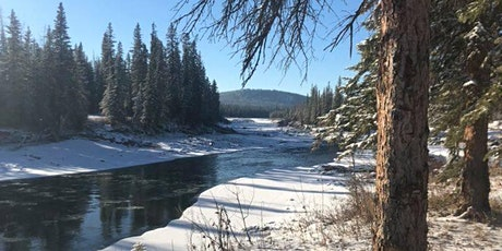 Beginner Guided snowshoe - Coal Camp Road (NW of Sundre) tickets