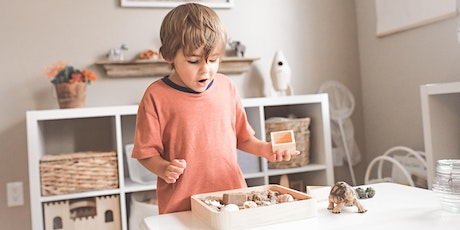 "January 9  - ""Montessori at Home"" Webinar: Intro to Montessori in the Home tickets"