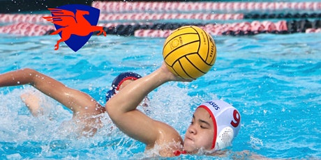 FREE Swim & Water Polo Clinic for Beginners tickets