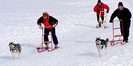 Teach Your Dog to Pull Winter training 101 (Club Trail Dog at 780) 201212 tickets