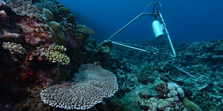 BEST: Ecoacoustic monitoring applied to marine biodiversity conservation tickets