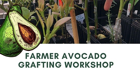 Avocado Grafting Workshop tickets