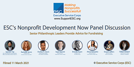 ESC's Nonprofit Development Now Panel Discussion tickets