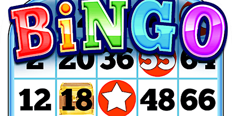 Adult Bingo tickets