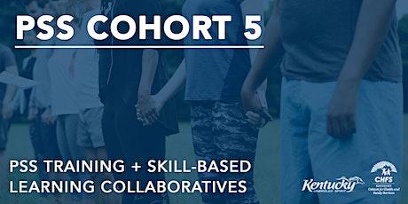 Cohort 5: PSS Training + Skill-Based Learning Collaboratives billets