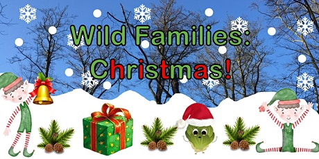 Wild Families Christmas tickets