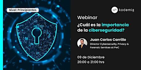 Webinar : ¿Cuál es la importancia de la ciberseguridad? entradas