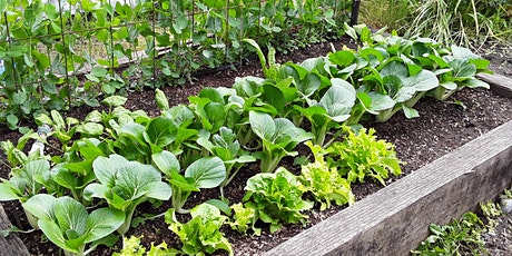 Organic Vegetable Gardening Classes tickets