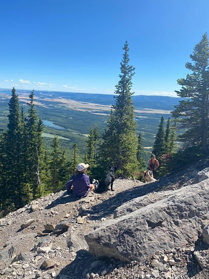 Intermediate guided hike- Yamnuska image