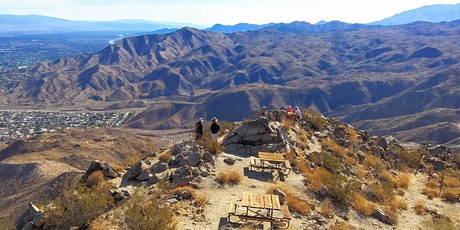 Hike Palm Springs Half Day with the Best Views tickets